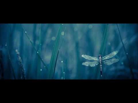 Adhiṭṭhāna (Downbeat & Chillgressive Mix) 2017