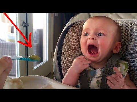 Funny Babies Trying Things For the First Time - Try not to Laugh Challenge