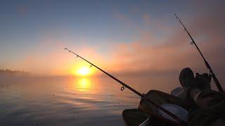 Рыбалка на сазана удочки ГНЕТ БУБЛИКОМ Прекрасный рассвет в тумане
