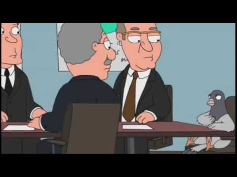 Family Guy Funny Clip - Stubborn Pigeon on an Ad Agency