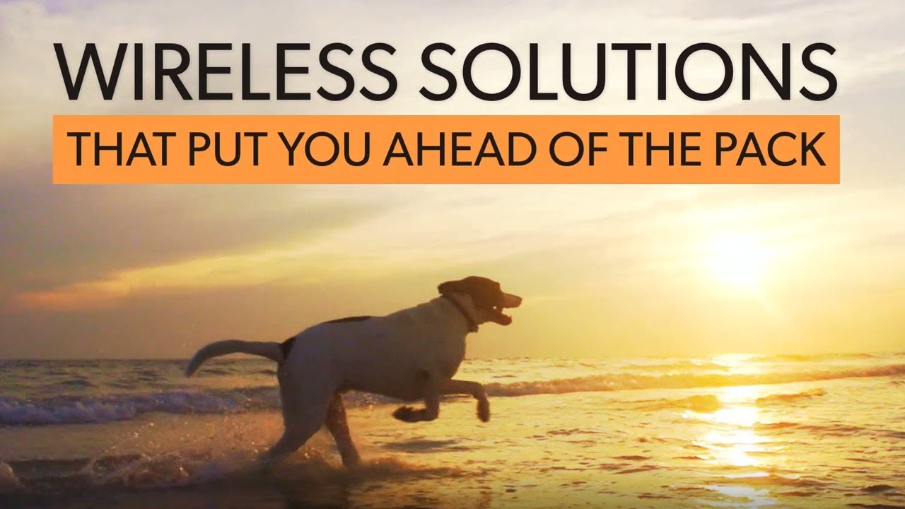 Ruckus Wireless Access Points   Routers   Premium Wifi Solutions