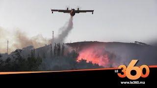Le360.ma •حريق مهول يتلف 40 هكتارا من الغطاء الغابوي بتطوان