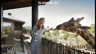 """""""평범한 호텔은 가라~~""""..야생동물…"""