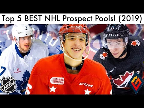 Top 5 BEST NHL Prospect Pools! (Hockey Prospect Rankings   Talk 2019) 689f75f6e