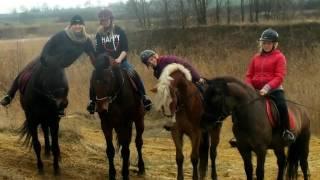 Moja zwariowana historia jeździectwa