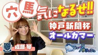 【神戸新聞杯&オールカマー】成瀬琴が穴馬をピックアップ!
