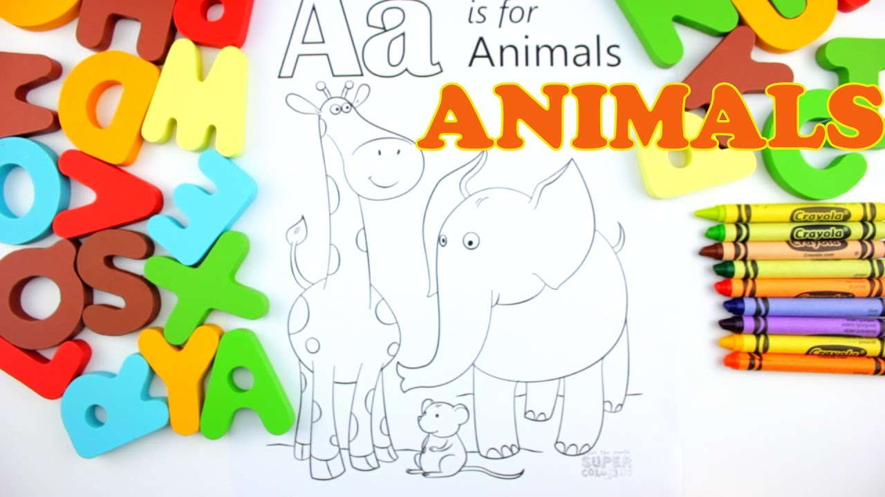 Learn Alphabet  Letter A Animals Coloring Pages  Education Video