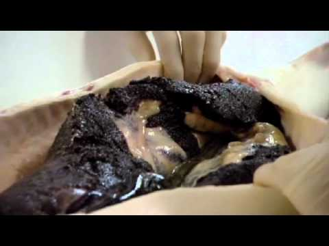 Gordon Ramsey extracting 15k worth of caviar from a single fish