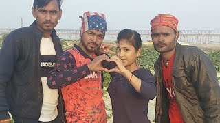 Shivani Comedy World Shivani Singh Live All Tim