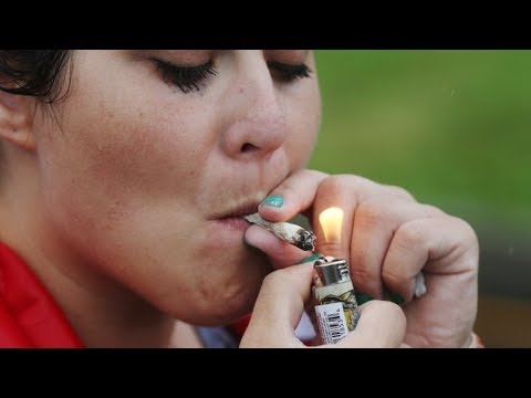 Pot and your health | What you want to know