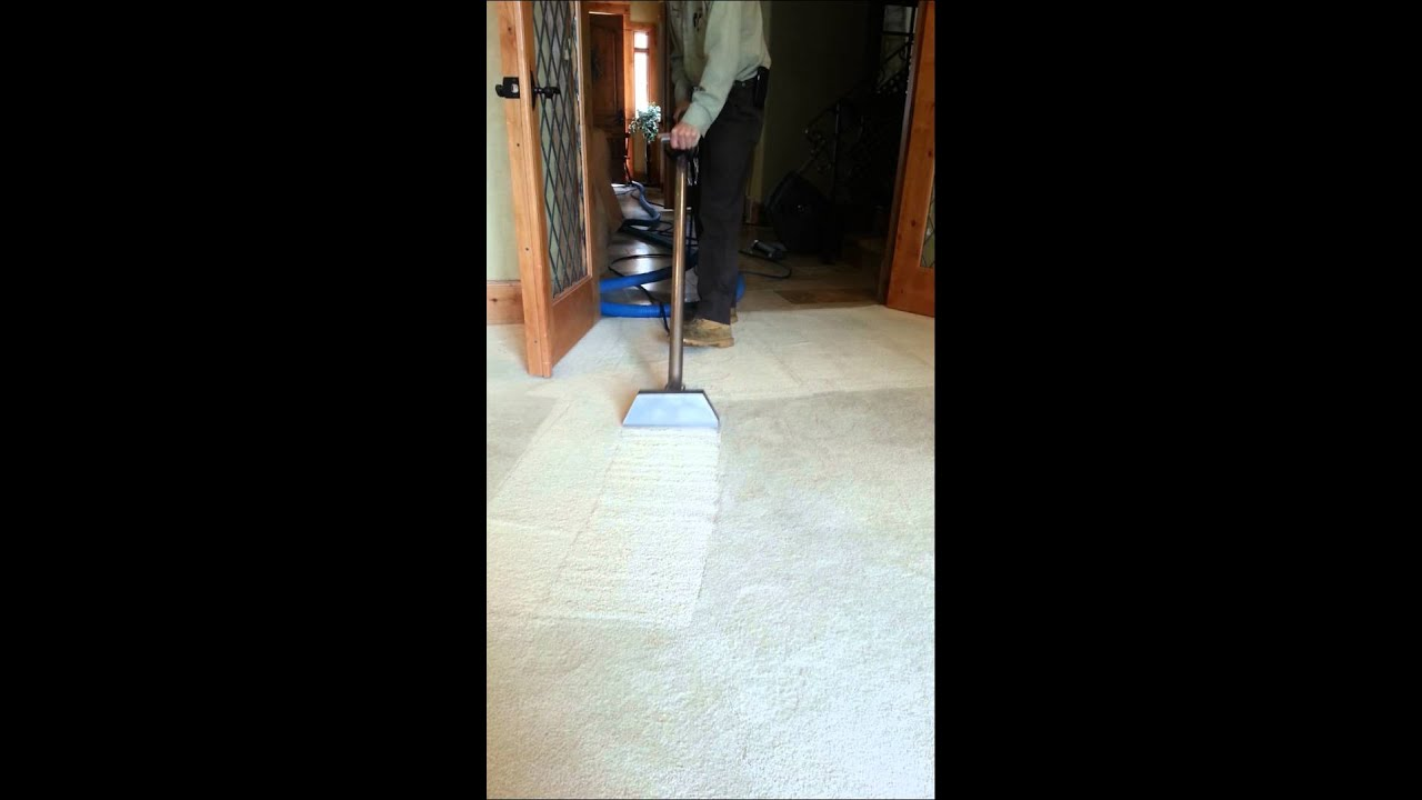 utah carpet cleaning services a fresh look carpet cleaning u0026 upholstery