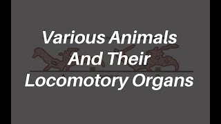 Various Animals And Their Locomotory Organs