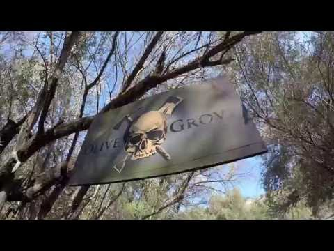 Olive Grove Dirt Jumps with Ariel (2016)
