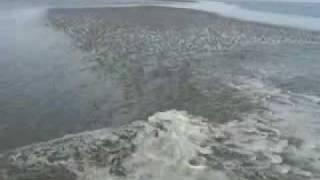 Achtung: Die Flut kommt!