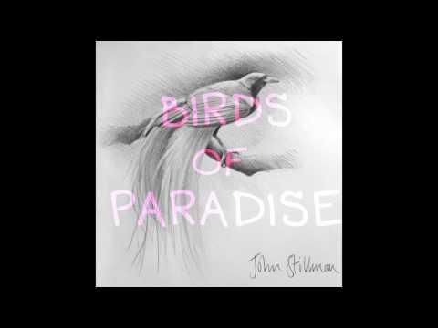 """BIRDS OF PARADISE"" - ORIGINAL MUSIC INSTRUMENTAL"