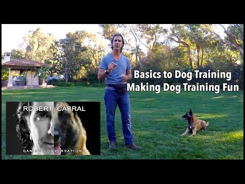 How to Make Dog Training Fun - Robert Cabral Dog Training Video #1