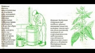 Органические удобрения из травы Крапивы и Окопника(Органическое удобрение из травы В органическом земледелии удобрения из травы давно пользуются широкой..., 2016-03-25T06:52:06.000Z)