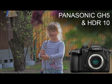 Panasonic GH5: HDR10 grading test / sample footage (BT.2020 / DCI P3)