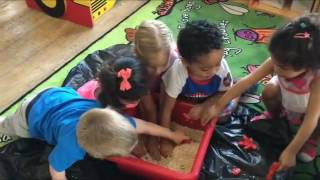 BELC Preschool children enjoying sensory play