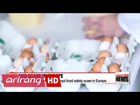 Insecticide-tainted eggs prompt food safety scare in Europe