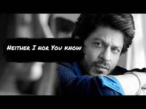 Hawayein  | Arijit Singh | Jab Harry Met Sejal |  English Translation