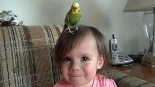 Little Girl Loves Her Bird?...... maybe