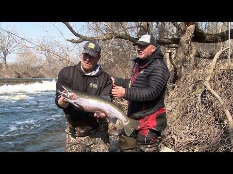 Spring Steelhead on the Milwaukee River - Larry Smith Outdoors