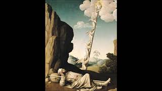 Friday in the 2nd Week of Lent: Stone, Ladder, and Vineyard