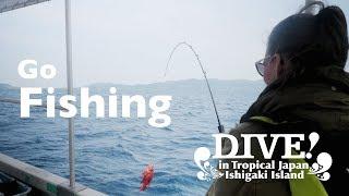 Рибалка   Як зробити Ісігакі   занурення в тропічний Японії
