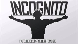 Pleasurecraft EP mixed by Incognito Music