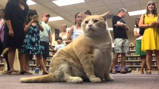 Fat Cat Norm Lopez Visits Central Library