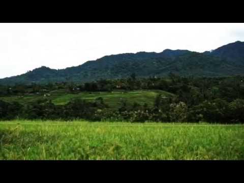 West Bali Villas - Umasari Resort