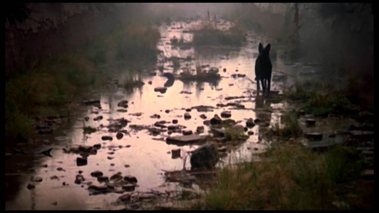 Film von Eduard Artemyev