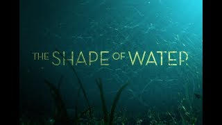 The Shape of Water 2017 - Main Theme / Soundtrack ( created by Fyrosand / feat. DaisyMeadow )