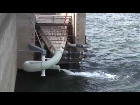 Wanapum Dam Fish Ladder July 9, 2014