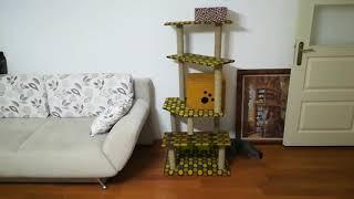Kedi Evi Yapımı - Homemade Cat House
