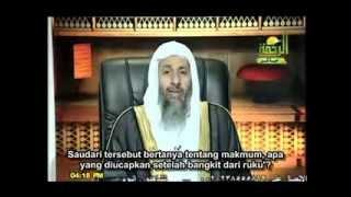 Bacaan makmum ketika bangkit dari rukuk - Sheikh Mustafa Al Adawy
