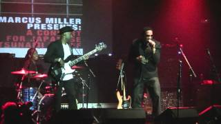Marcus Miller Presents: A Concert for Tsunami Relief with Q-Tip