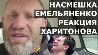 Харитонов - ОТВЕТ Емельяненко, бой на Top Dog, перевес 12 кг
