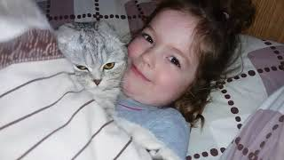 Вечерние Обнимашки Кошки Хлои с Ребенком 😻 Любовь между Кошкой и Ребенком 🐱 Cat