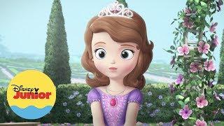 O Amuleto  I Momentos Mágicos I Princesinha Sofia