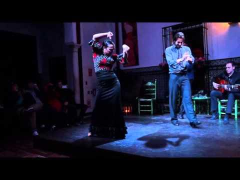 西班牙塞維亞sevilla的佛朗明哥舞(謝幕影片)- La Casa del Flamenco-Auditorio Alcantara