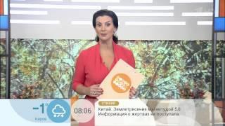 Екатерина Стриженова(Это видео создано с помощью видеоредактора YouTube (http://www.youtube.com/editor), 2014-11-14T21:20:20.000Z)