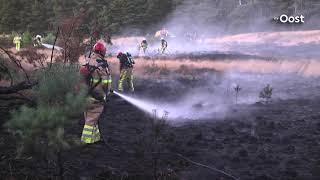 Brandweer blust natuurbrand in Dalfsen