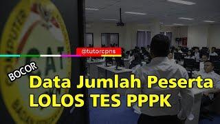 Data Jumlah Peserta P3K 2019 Tahap 1 Lolos Passing Grade Tes
