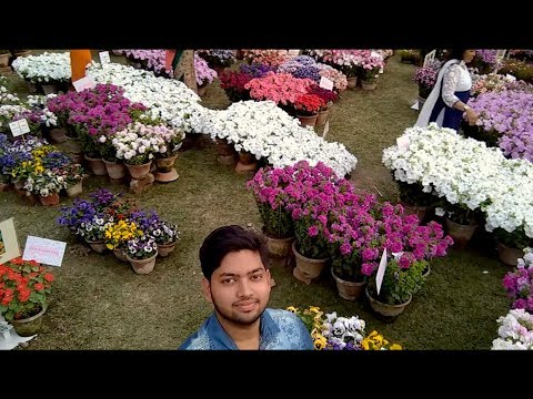 MUST WATCH THE AGRI-HORTICULTURAL FLOWER SHOW 2018