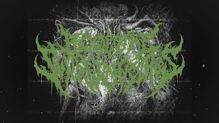 BEHOLD THE SLITTED CARCASS - TRAPPED BETWEEN TREACHEROUS MUTAGENIC PATHWAYS [SINGLE] (2020) SW EXCL
