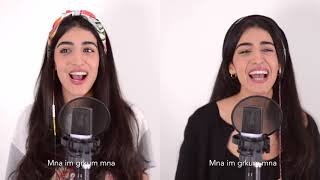 Смотреть клип Luciana Zogbi - Friends Mashup