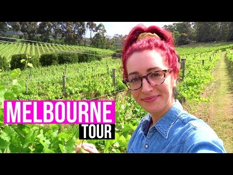 MELBOURNE TOUR | Fitzroy, St Kilda + More! | Melbourne Wine Region