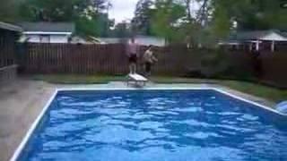 Diving Board Crack